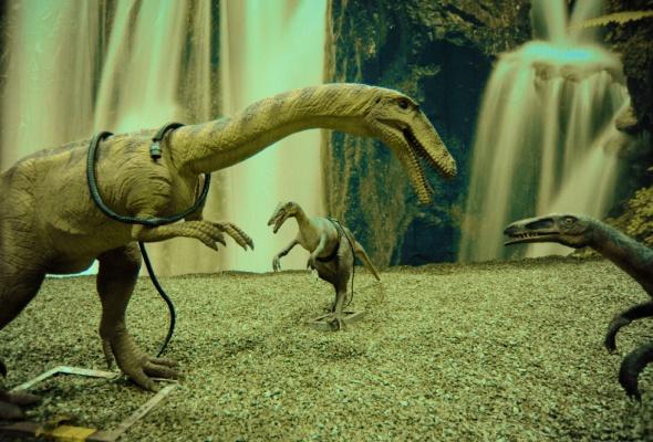 Динозаврики - Фото №7