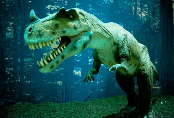 Динозаврики - Фото №4