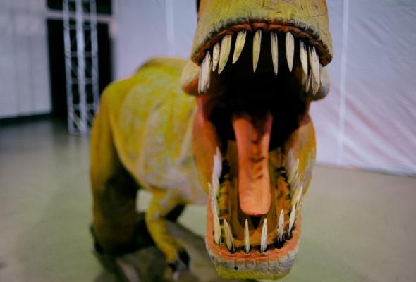 Динозаврики - Фото №0