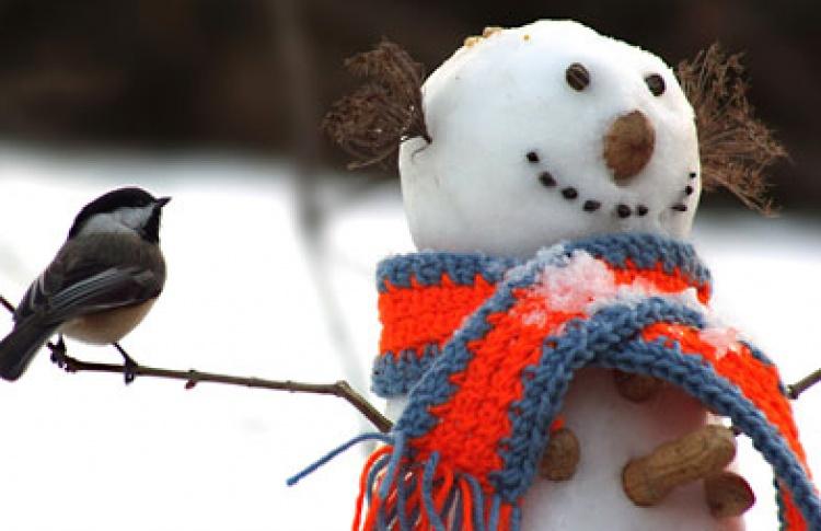Парад Снеговиков