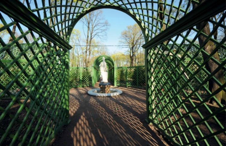 Бесплатные ботанические экскурсии в Летнем саду