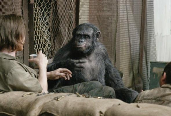 Планета обезьян: революция - Фото №4