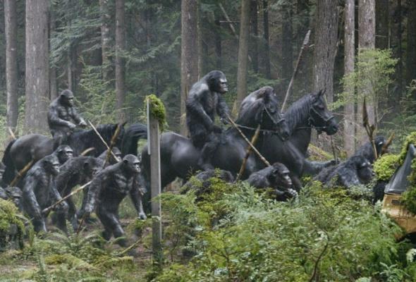 Планета обезьян: революция - Фото №1