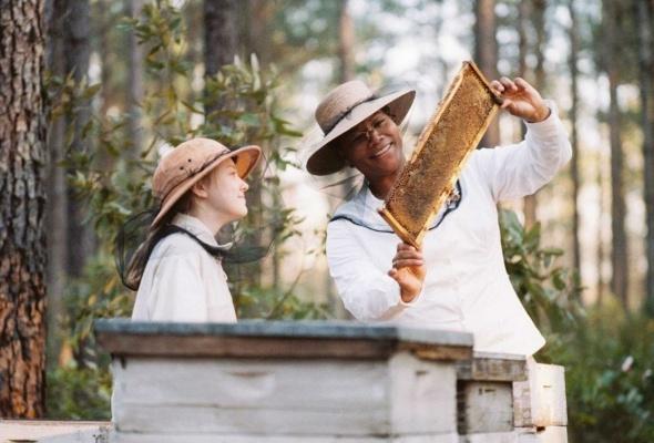 Тайная жизнь пчел - Фото №0