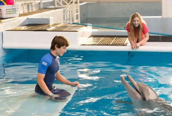 История дельфина 2 - Фото №1