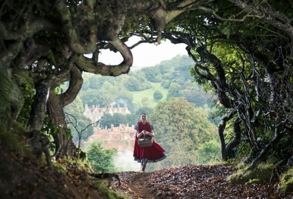 Чем дальше в лес - Фото №1