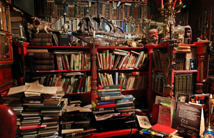 Читальный зал: книжные шкафы депутата, певицы, журналиста и еще пятерых горожан Фото №449218