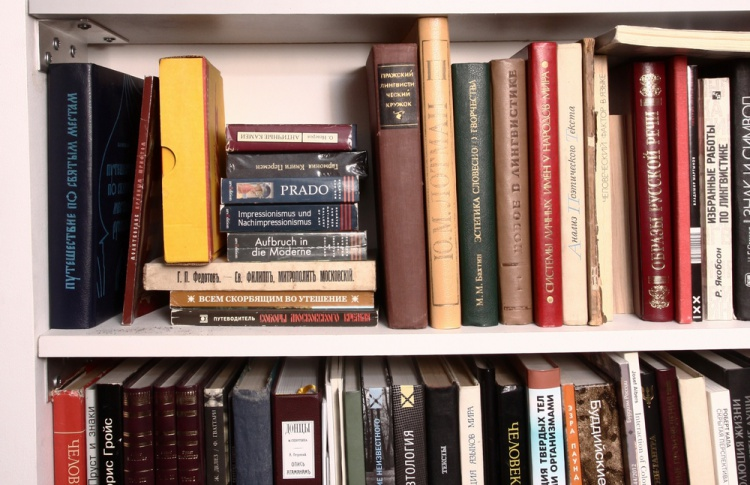 Читальный зал: книжные шкафы депутата, певицы, журналиста и еще пятерых горожан Фото №449219