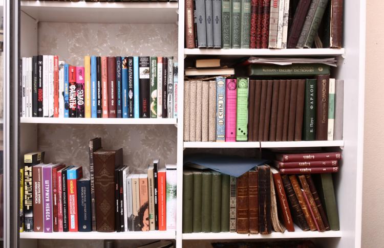 Читальный зал: книжные шкафы депутата, певицы, журналиста и еще пятерых горожан Фото №449221