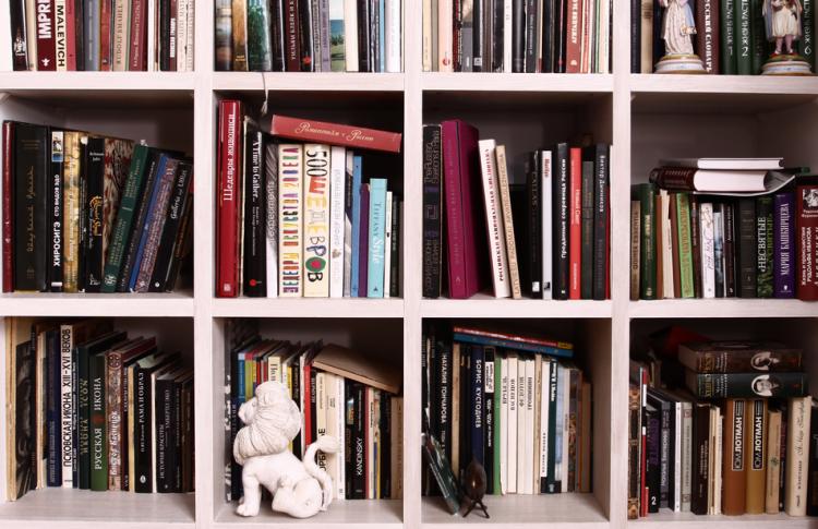 Читальный зал: книжные шкафы депутата, певицы, журналиста и еще пятерых горожан