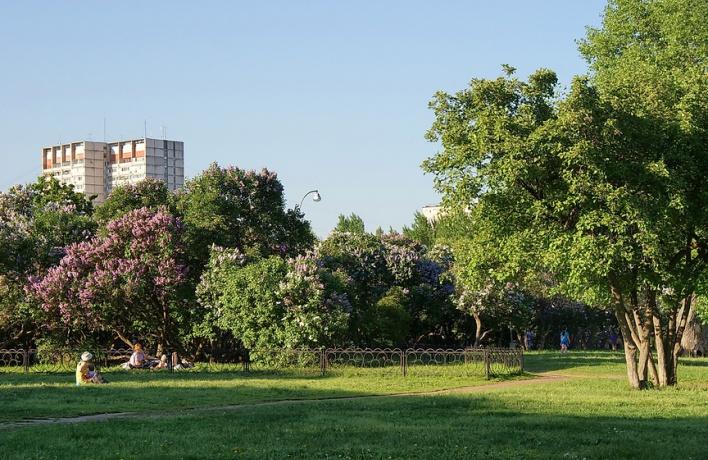 В следующем году в Москве обустроят еще 50 парков на окраинах