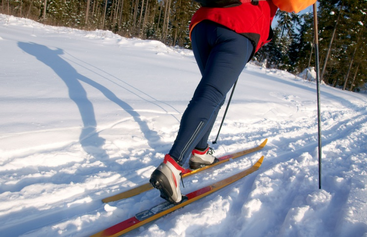 В Сокольниках появится самая длинная лыжня в Москве