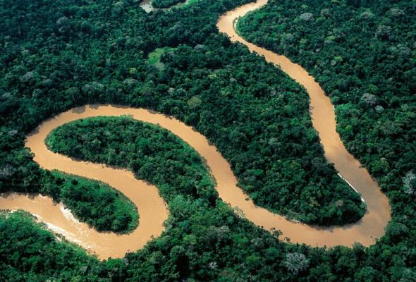 Амазония: Инструкция по выживанию - Фото №6