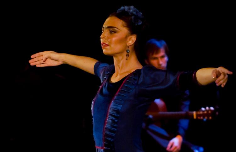 Пикассо: Снаружи и Внутри»Фламенко-шоу«