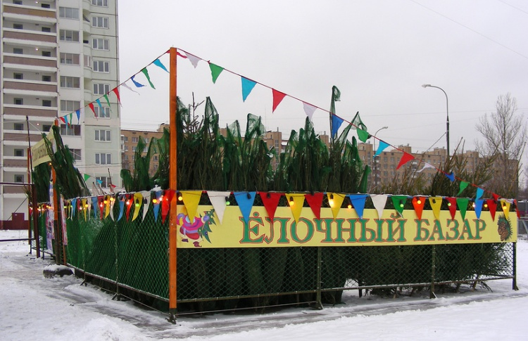 В субботу в Москве начинают работать елочные базары