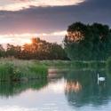 На Москве-реке появятся плавучие острова