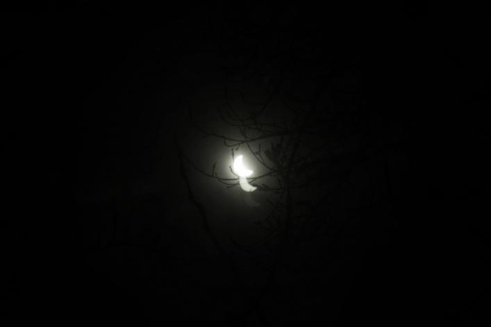 Москвичи увидели затмение очень по-разному