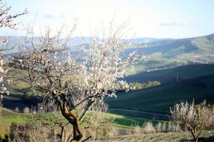 Сицилия рядом