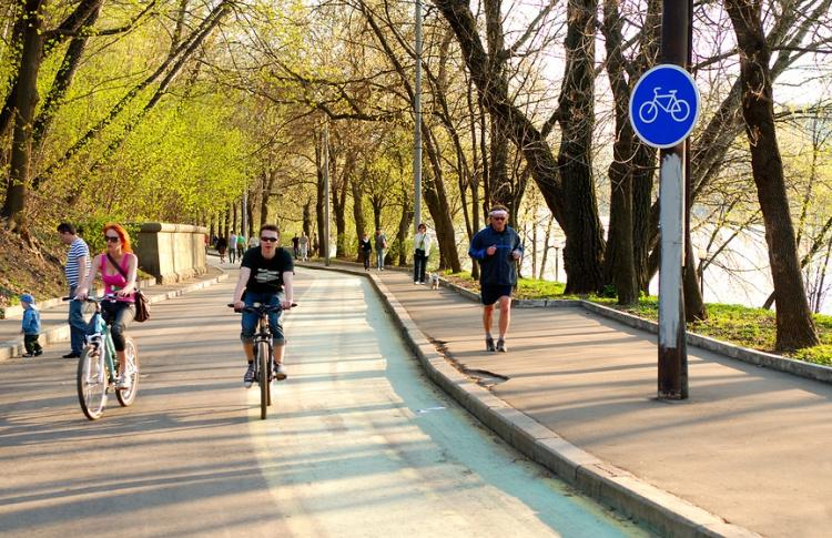 Катись с опаской. За что велосипедисты ненавидят Москву
