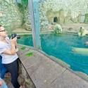 8 самых популярных животных Московского зоопарка