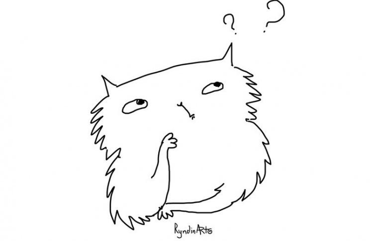 Епифан в Республике кошек