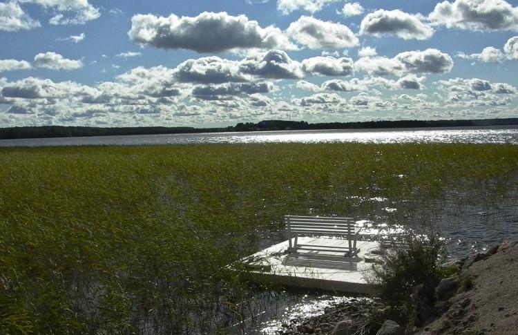 Берег озера Отрадное