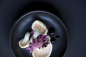 White Rabbit Family открывает Mushrooms