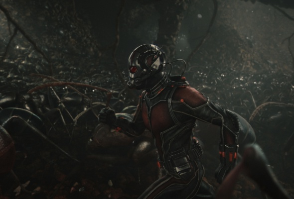 человек муравей - Фото №3