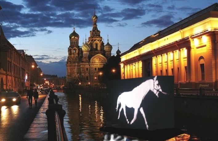 В ночь с 25 на 26 июля по рекам и каналам города проскачет белая лошадь