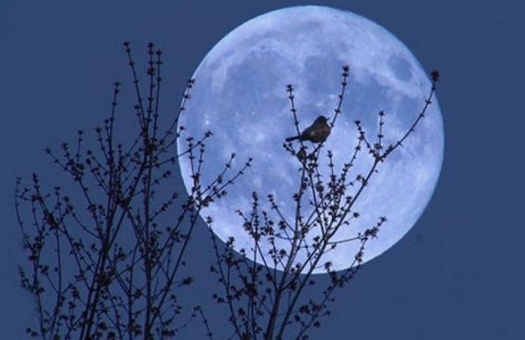 Над Москвой снова взойдет «голубая луна»