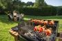 В парках могут запретить жарить шашлыки на своих мангалах