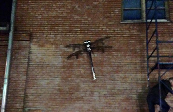 Перед «Ватниками апокалипсиса» на «Винзавод» напали стрекозы