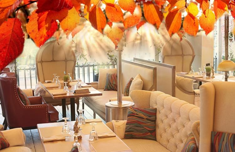 Бабье лето в ресторане Shakti Terrace