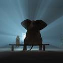 В Москве могут открыть кинотеатр для животных