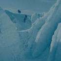 На фестивале научного кино в Политехе покажут фильмы об Эвересте и шимпанзе