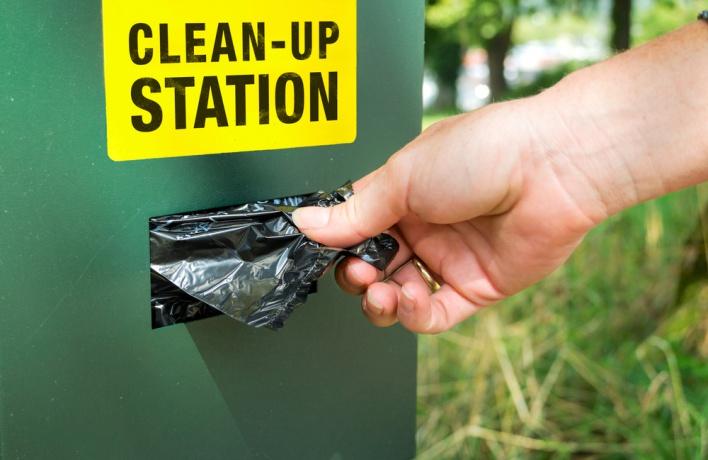 В скверах появятся пакеты для уборки за собаками