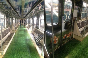 В метро запустят поезд в честь амурского тигра