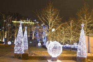 На Тверской заменят на зиму все деревья