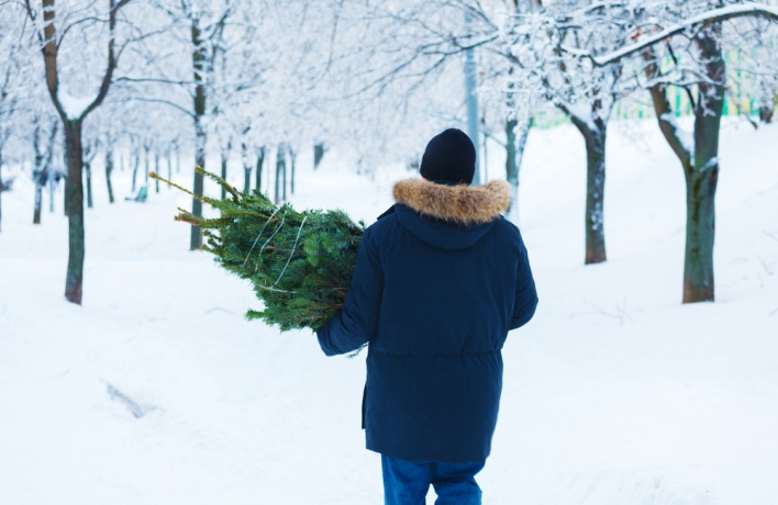 В Москве появились пункты по сбору елок