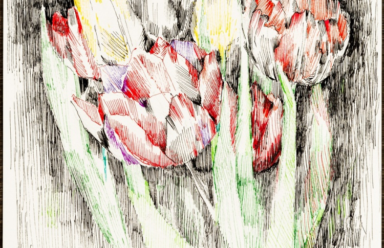 Выставка «Наталья Альтшулер. Легкое дыхание»