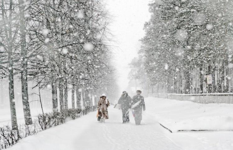 Метель накануне весны: прогноз погоды с 22 по 28 февраля