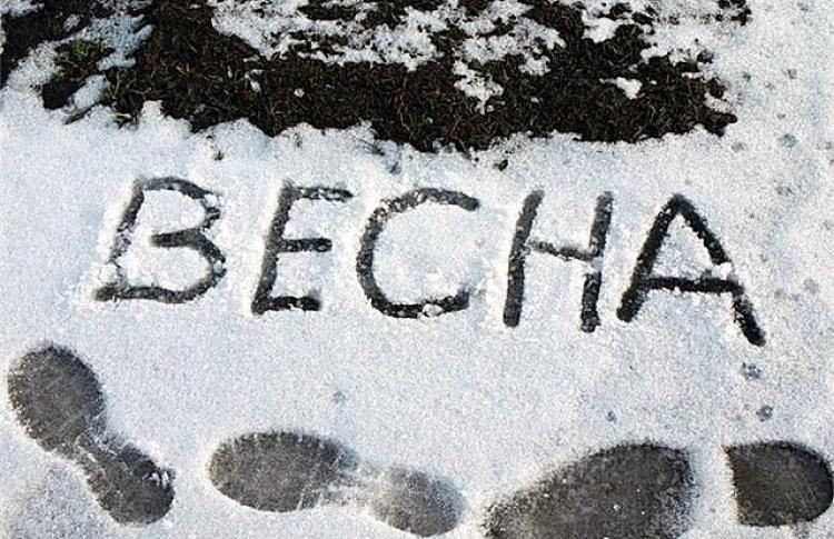 Рано радовались: сегодня ночью будут заморозки