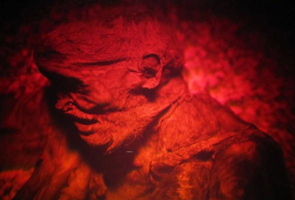 Magic of Light — выставка световых инсталляций, голограмм и оптоклонов (со скидкой 52%) - Фото №3