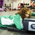 9 вещей, которые не стоит делать в тренажерном зале