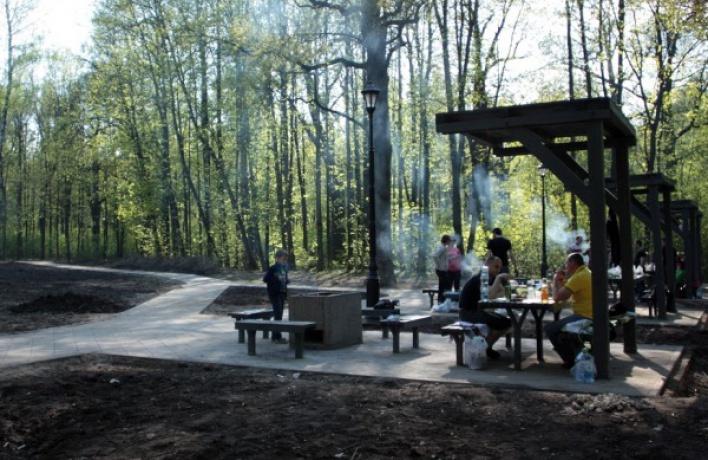 В Москве откроют около 300 точек для пикников