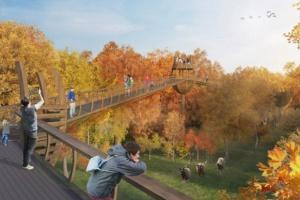 В парке «Сокольники» появится пешеходный подвесной мост