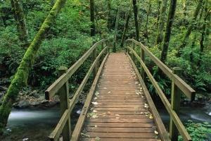На Яузе построят деревянные пешеходные мосты