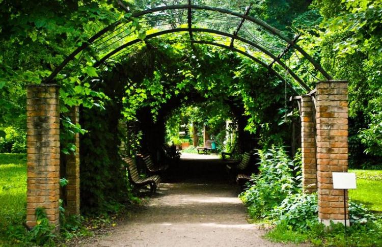 Ботанический сад рядом с Сити впервые открыли для всех желающих