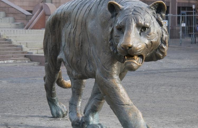На Красной площади появятся тигры и леопарды