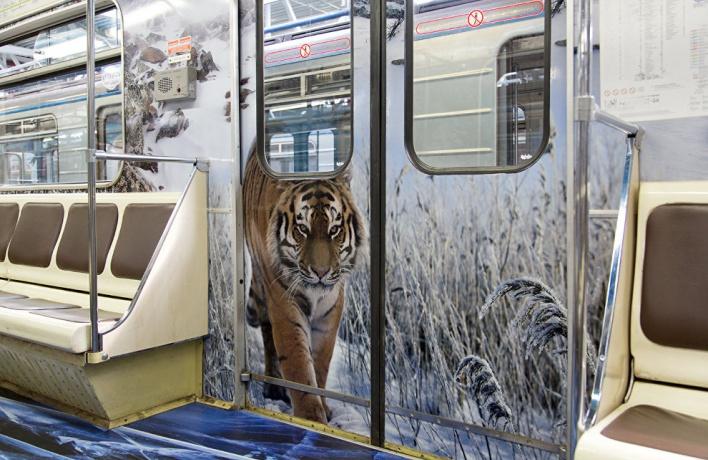 В метро появится еще один «тигровый» поезд